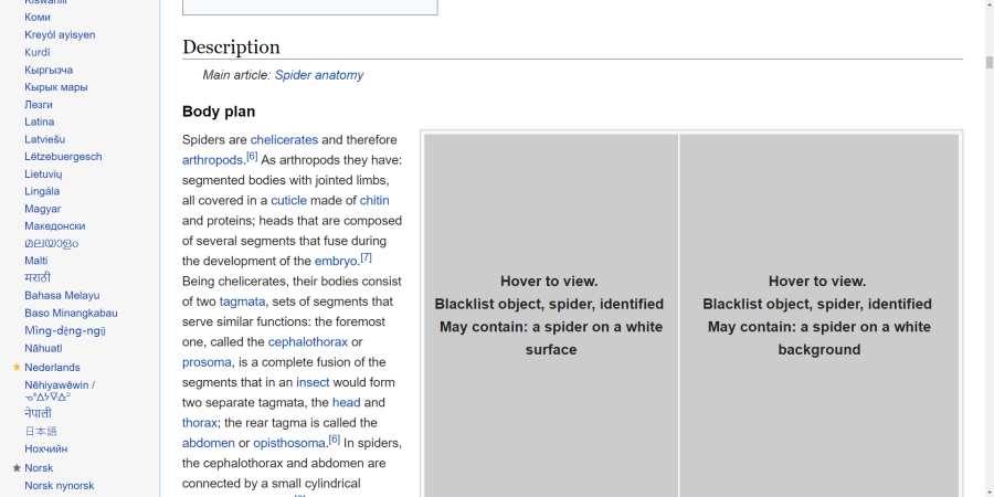 The Wikipedia entry for spiders, with spiders blocked.